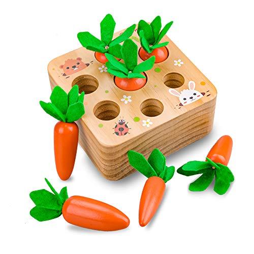Evira 1 2 3 Jahre altes Babyspielzeug, Montessori Kinder sensorisches Spielzeug 12 18 24 Monate altes Baby Holzspielzeug 1-3 Jahre alte Kinder Mädchen Geburtstagsgeschenke Vorschule Lernspielzeug